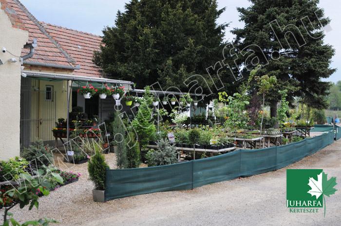 Kertészeti áruda